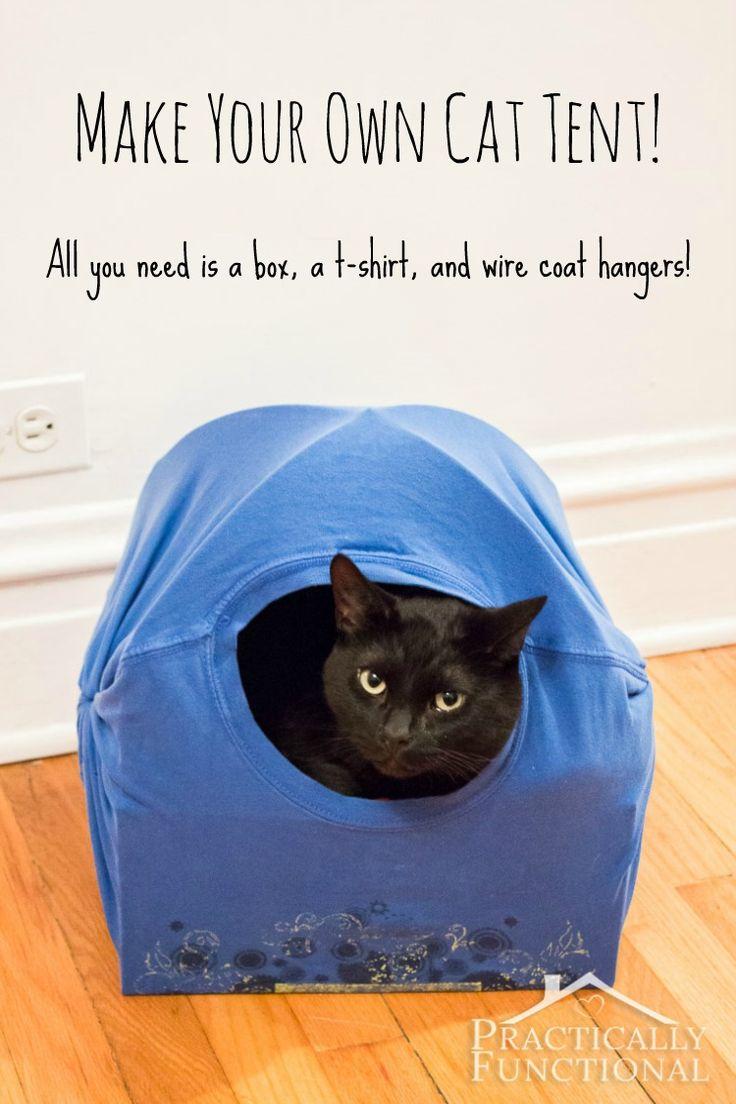 Cuccia Gatto Fai Da Te cucce per gatti fai da te - riciclofacile.it - idee per