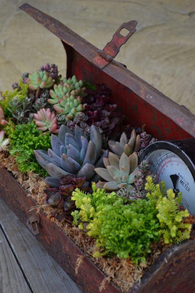 Riciclo in giardino idee per riciclare ed abbellire il for Abbellire giardino