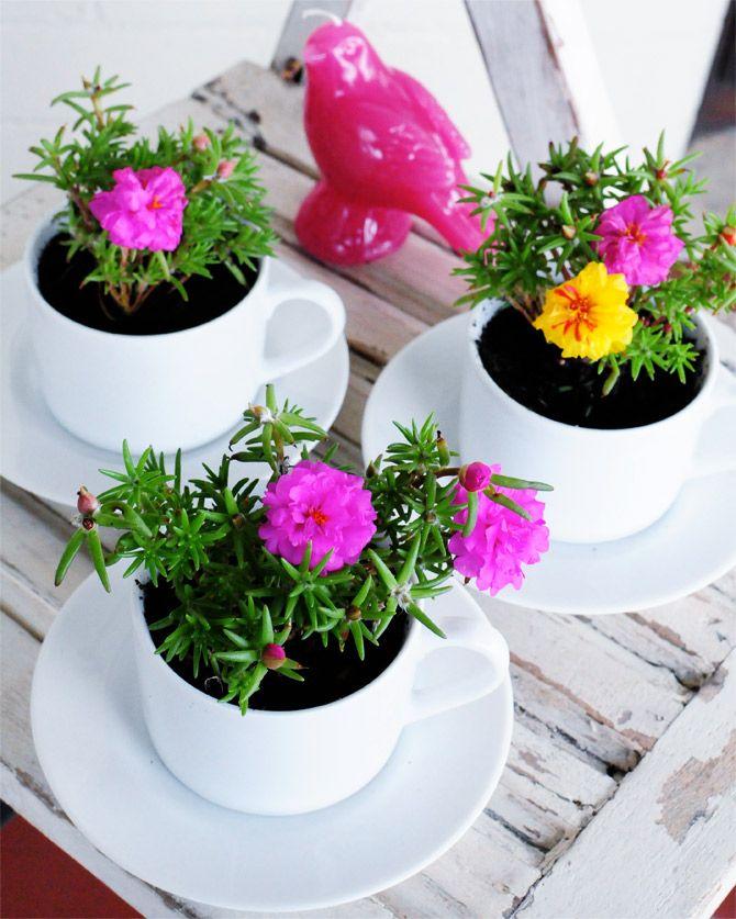 Riciclo in giardino idee per riciclare ed abbellire il giardino